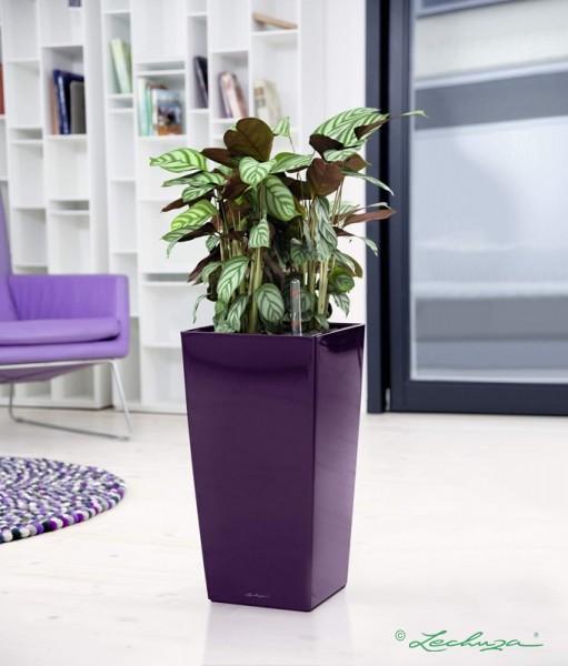 lechuza cubico 30 sklep flodesign balkoneria. Black Bedroom Furniture Sets. Home Design Ideas